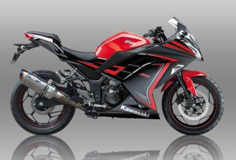 Kawasaki-ninja-250-beet-performance-1