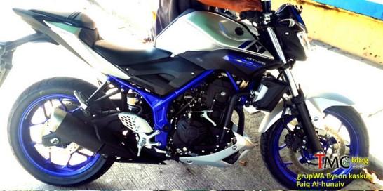 Yamaha-MT-25-fn